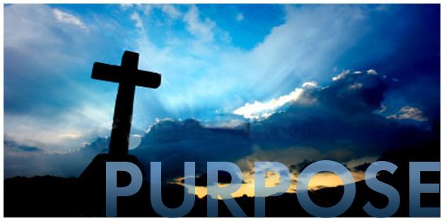 God's Purpose