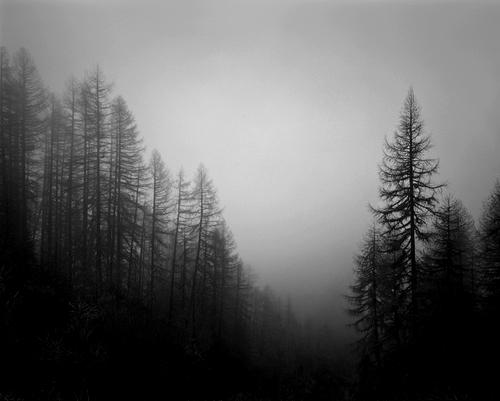 Devotionals For Leaders: When DarknessFalls
