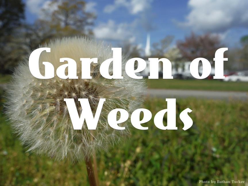 Devotionals For Leaders: Garden OfWeeds
