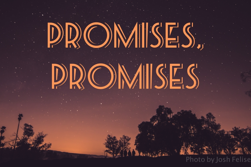 Devotionals For Leaders: Promises, Promises