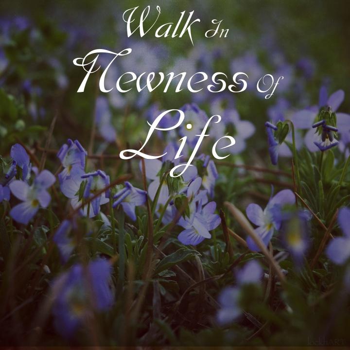 walk in new life