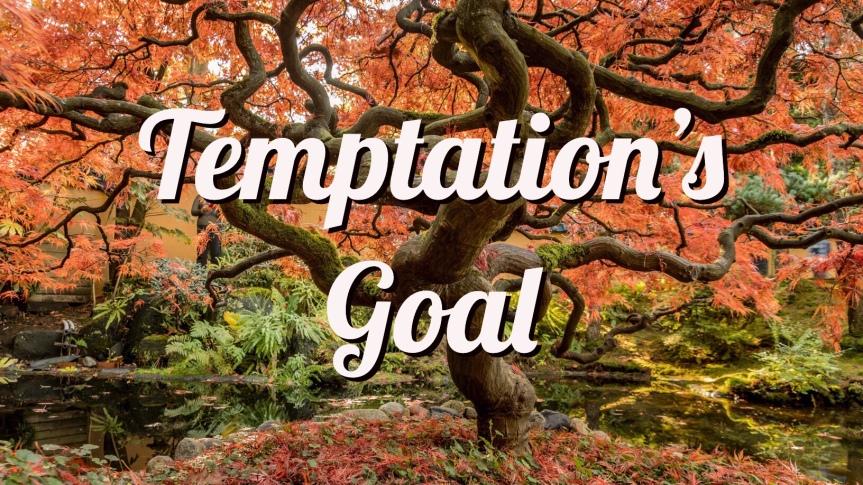 Temptation's Goal